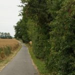 lauraradweg22.07.19_vippachedelhausen_nach_dielsdorf