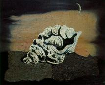 Huile De Salvador Dali - 1928 - Conque