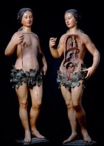 A 'Venus' medical mannequin from the 'Anatomie des Vanités' exhibit at the Erasmus House in Brussels, Belgium