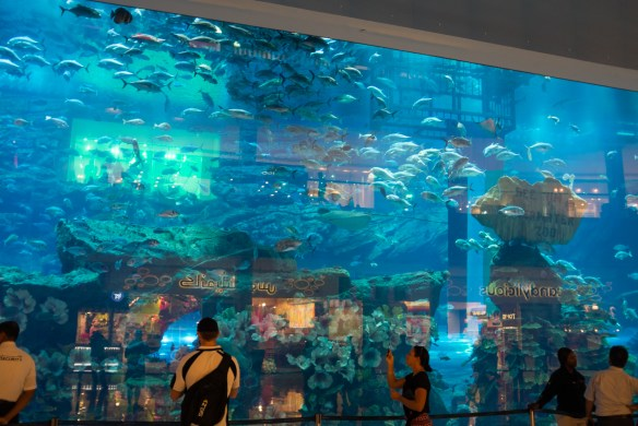 The Aquarium in the Dubai Mall.