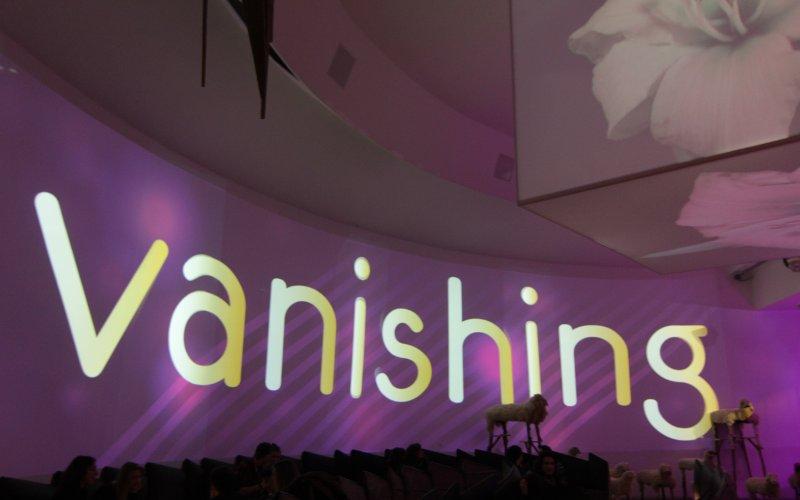 2015-07-12 - vanishing