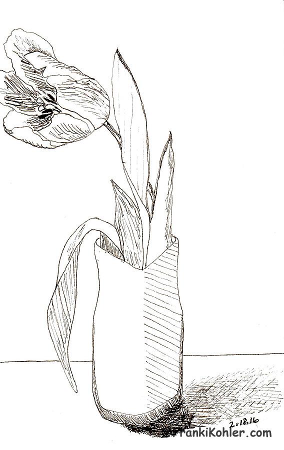 02-18-16 tulip sketch
