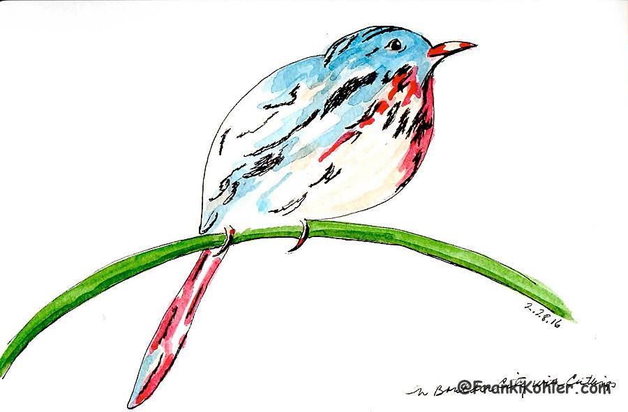02-28-16 birdie