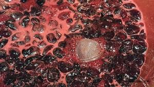 06-19-16 cherry jam