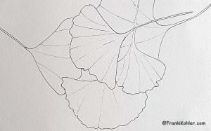 12-04-15-ginkgo-sketch