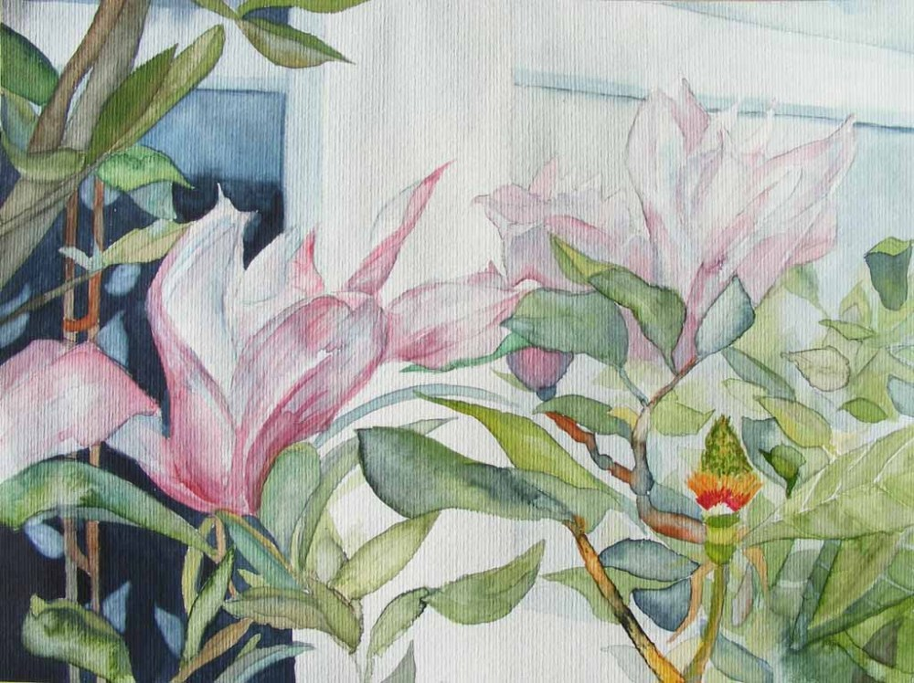 Blumen & Blüten (6/6)