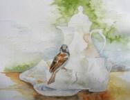 Besuch bei der Kaffeetafel (1) (c) Spatzen Aquarell von Frank Koebsch