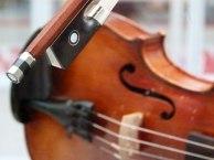 Geigenbaukunst von Christine Steidler (c) FRank Koebsch (1)