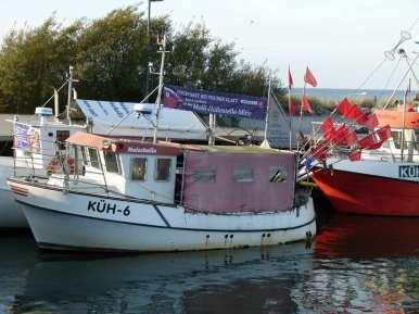Fischerboote im Kühlungsborner Bootshafen (c) FRank Koebsch (2)
