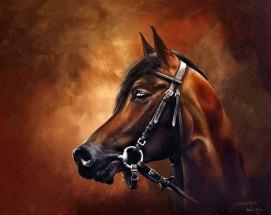 Chimeryk, Polnischer Araber, Racehorse (c) Öl auf Leinwand von Karina Sturm