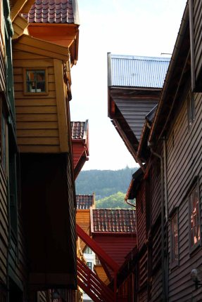 Bryggen in Bergen (c) Frank Koebsch (1)