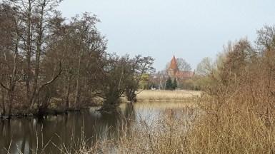 Spaziergang an der Warnow auf den Spuren von Franz Bunke (c) Frank Koebsch (2)