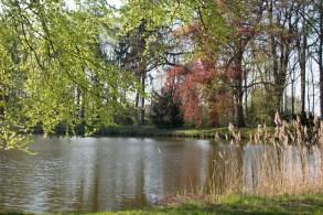 Farben des Frühlings am See im Schlosspark Griebenow (c) Frank Koebsch