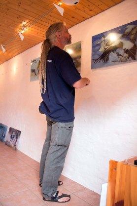 Mike Peters vom Deutsches Meeresmuseum hängt die Drucke der Kranich Aquarelle (c) FRank Koebsch