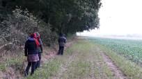 Kranichbeobachtungen auf der Malreise in den Müritz Nationalpark (c) FRank Koebsch (2)