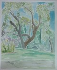 """""""UW-Whitewater,"""" Watercolor on Paper, $100"""