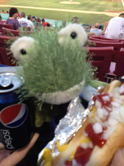My stuffed frog Nippers, a hot dog and can of Pepsi.