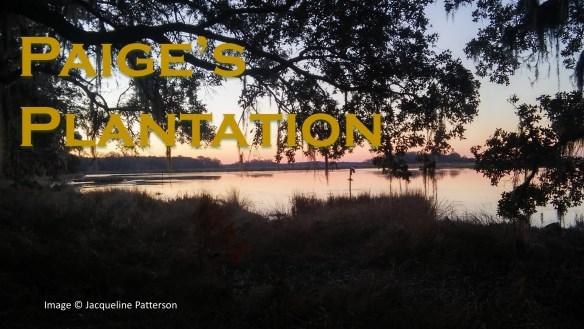 Paige's Plantation