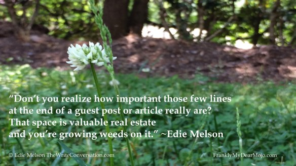 Edie Melson: You are Killing Yourself With a Weak (or Nonexistent) Bio