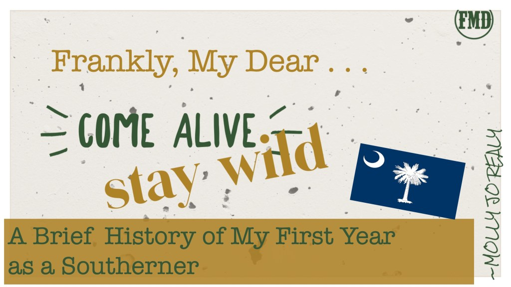 Frankly, My Dear . . . : A Brief History of My First Year as a Southerner