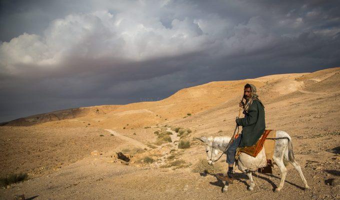 beduin szamaras