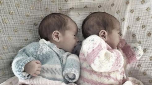 twins v