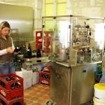 De wijngaarden en wijnen van Irancy