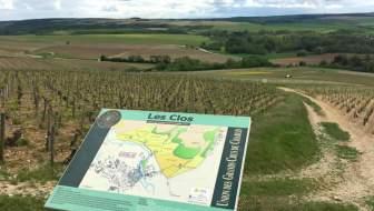 Chablis – heerlijk dorp in de Bourgogne