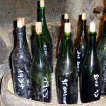 Een bijzondere wijnproeverij