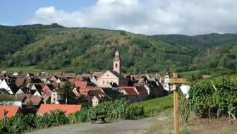 Riquewihr: een paar dagen naar de Elzas