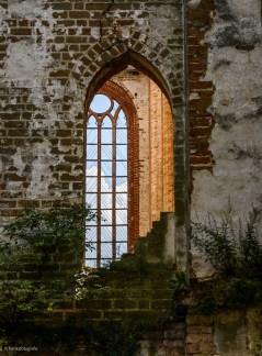Ausblick in die ehemalige Klosterkirche