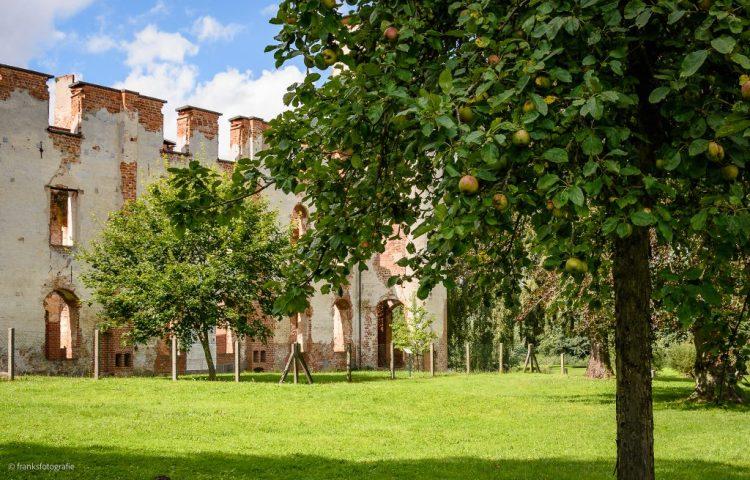 Schloss Dargun erkunden - Obstbaumwiese