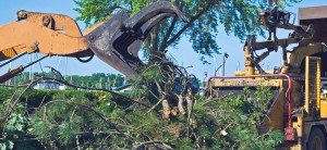Local Debris Removal Palmetto Bay