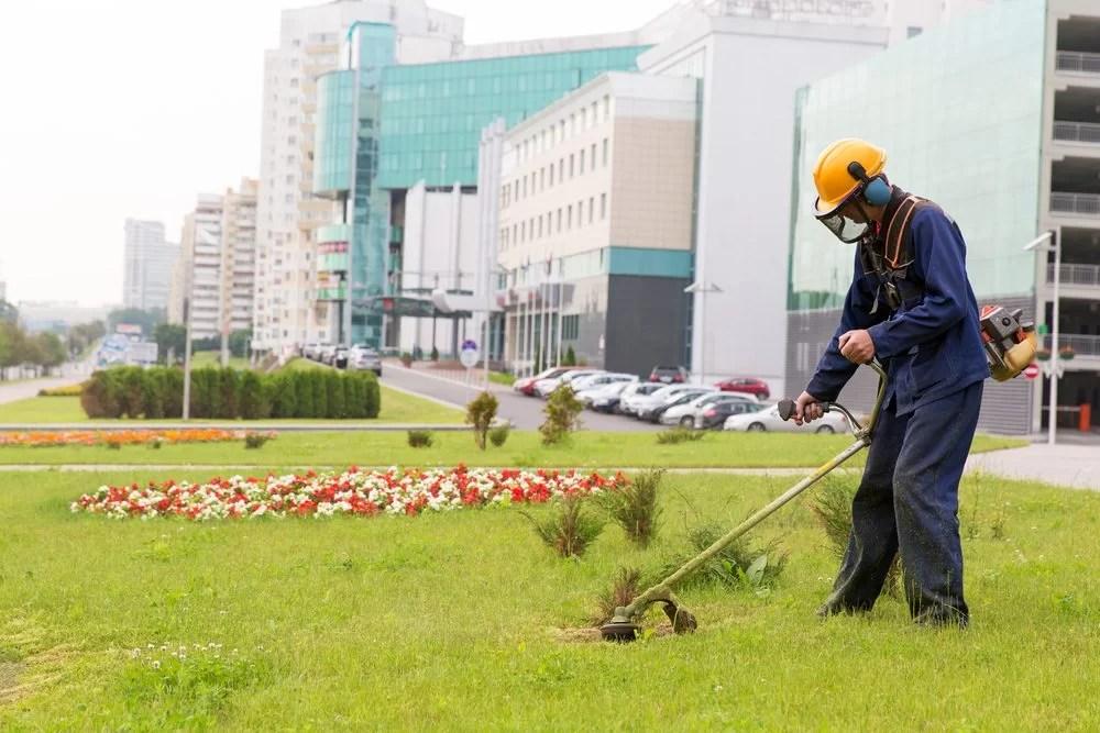 Commercial Landscape Maintenance