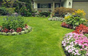 Landscape Maintenance , Lawn Maintenance in Cutler