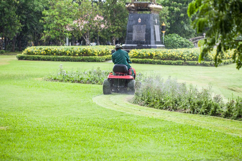 Lawn Maintenance Business