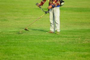 Lawn Mowing Services , Lawn Mowing Near South Miami