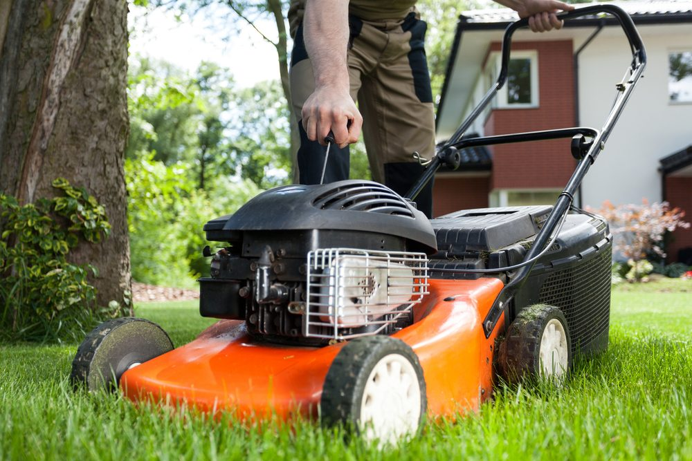 Lawn Mowing Services Miami