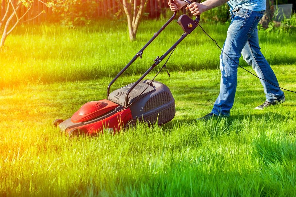 Best Lawn Mowing Services