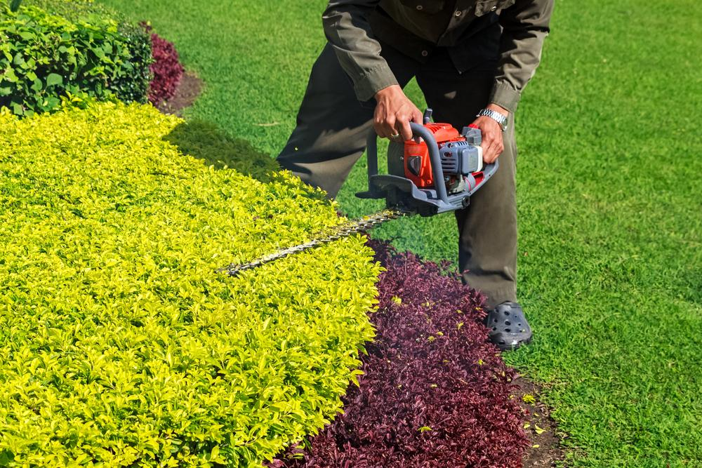 Commerical Landscape Services