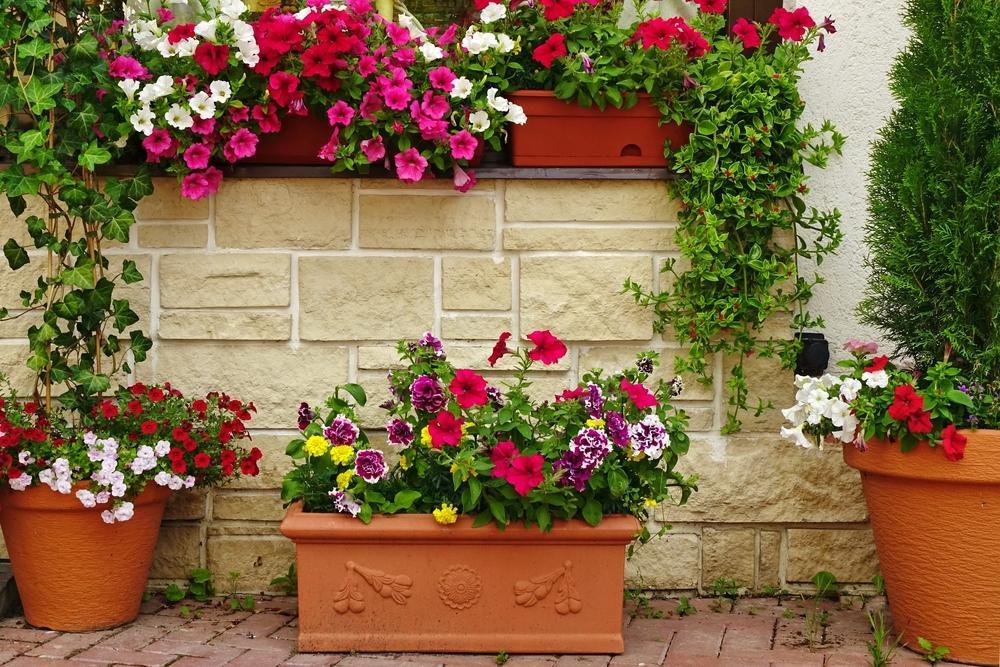 Garden Lawn Care