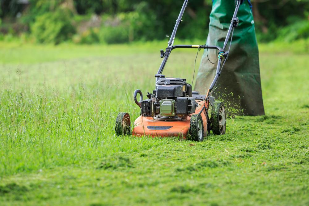 Grass Cutter Company