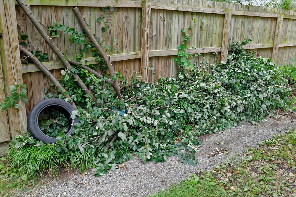 Lawn Debris Removal