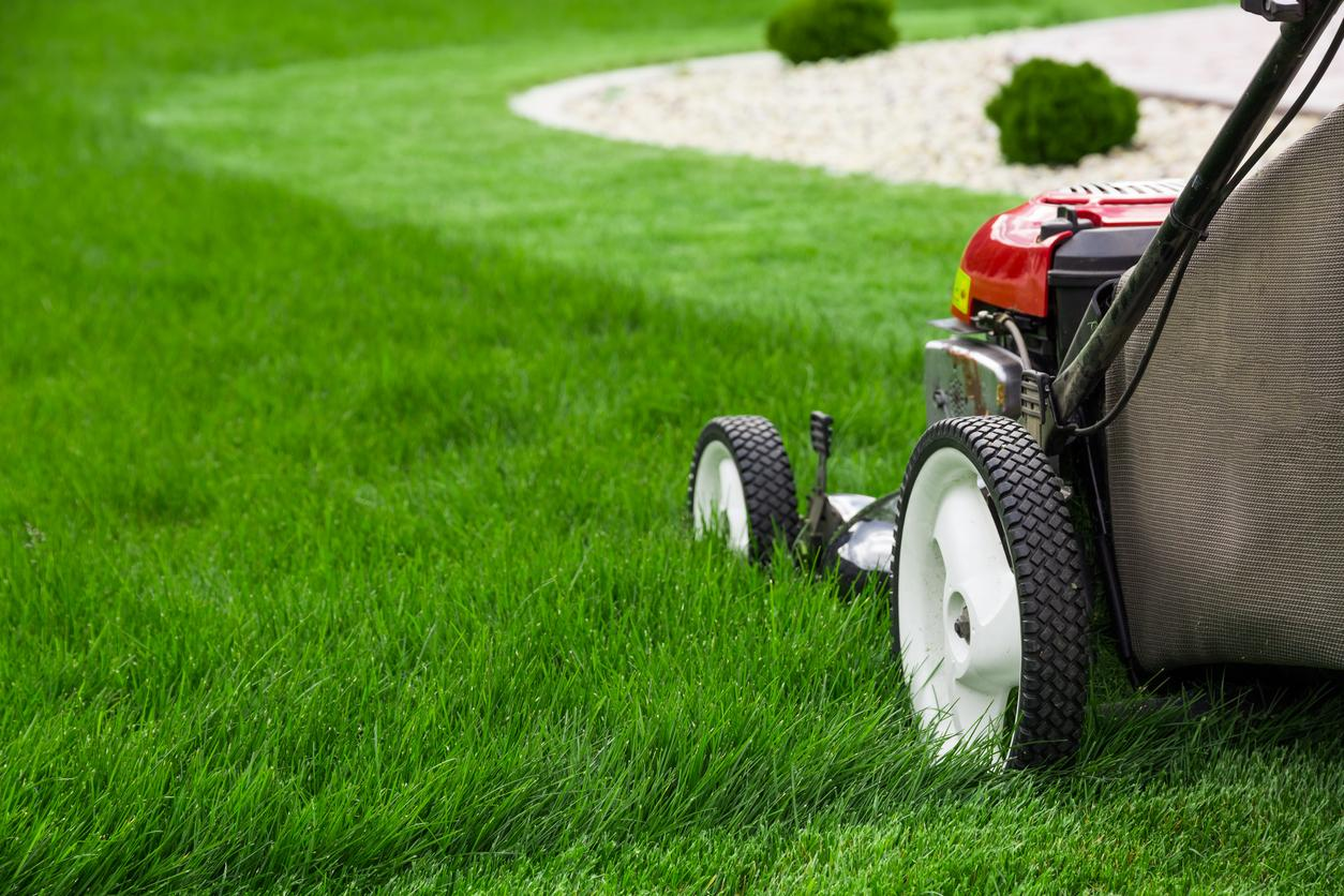 Lawn Maintenance Tips