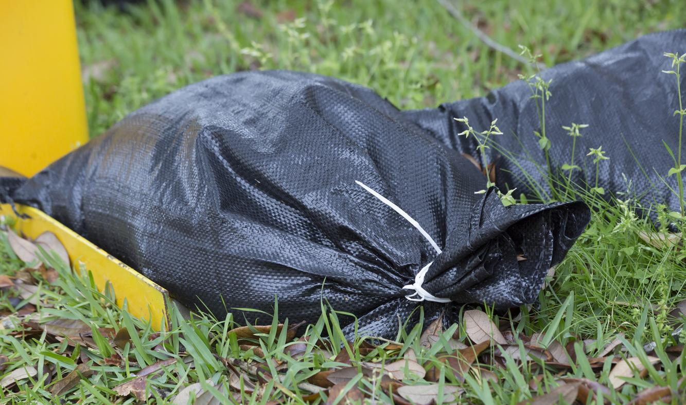 Landscaping Debris Removal