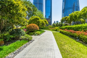 Commercial Landscaping in South Miami