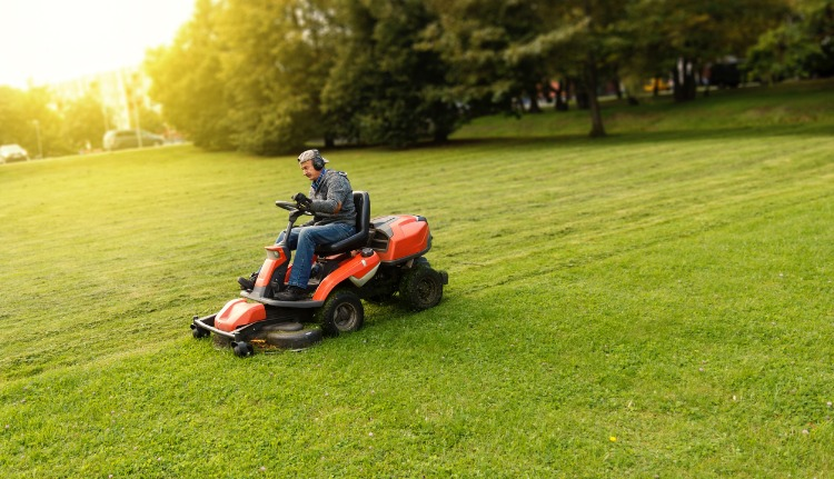 Professionally Maintained Lawn Services in Kendall