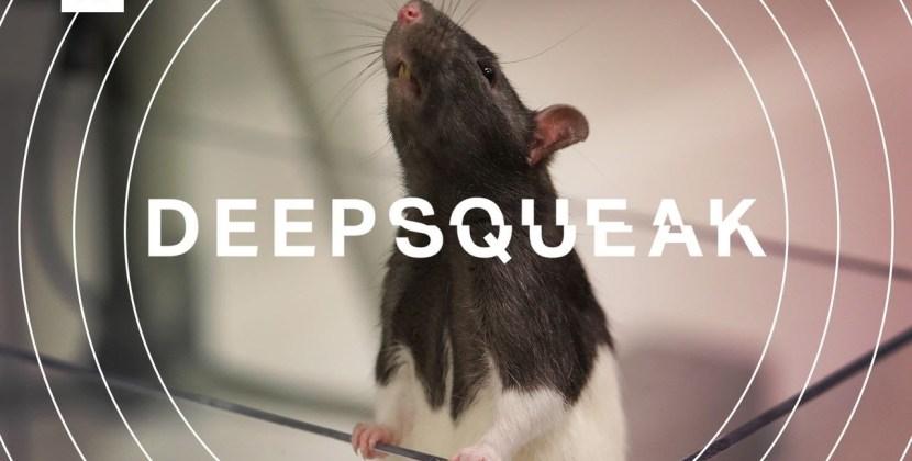 DeepSqueak: How AI Could Decode Animal Speech