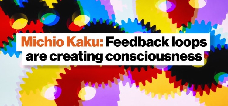 Michio Kaku on How Feedback Loops Create Consciousness