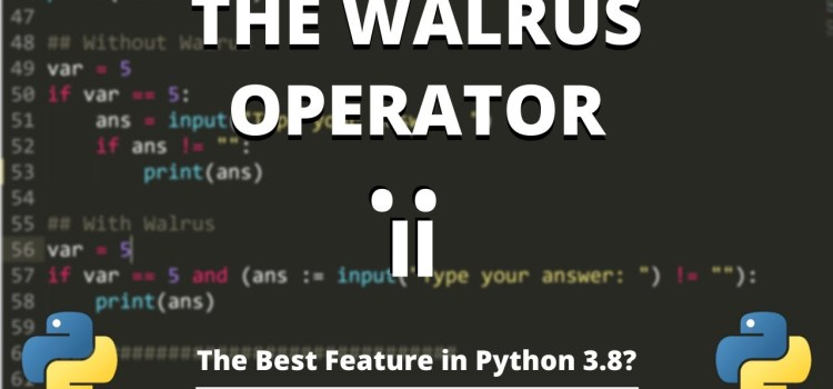 The Python Walrus Operator